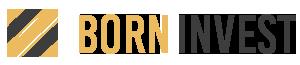 Borninvest - Steueroptimierung Investments